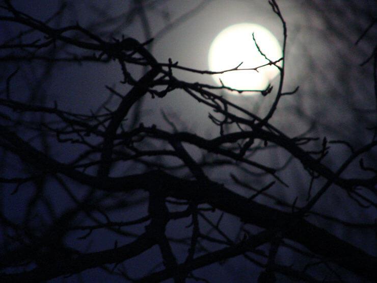 romanzo gotico storie di paura