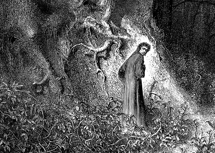 il bosco nel medioevo selva oscura